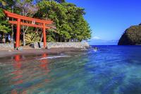 静岡県 御浜岬と富士山(諸口神社)