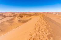 ナミビア ナミブ砂漠