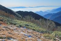 長野県 爺ケ岳より富士山遠望