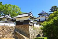 岡山県 備中松山城と青空