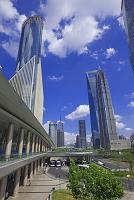 中国 上海 陸家嘴