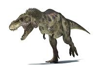 CG ティラノサウルス