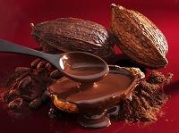 チョコレートソースとカカオ豆
