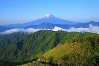 山梨県 白谷丸 残雪の富士山と新緑の山並み