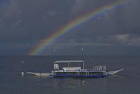 フィリピン セブ島 虹とバンカーボート