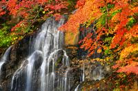 青森県 黒石市 中野もみじ山・不動の滝