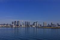 東京 レインボーブリッジから見た豊洲・晴海周辺