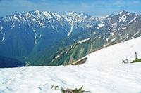 長野県 爺ケ岳の稜線から蓮華岳左と針ノ木岳中央の山