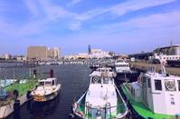 千葉県 船橋漁港 港内