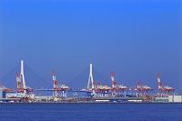 横浜港 本牧埠頭のガントリークレーン