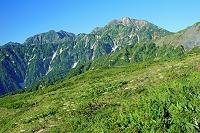 長野県 八方尾根から鹿島槍ケ岳左と五竜岳右の山