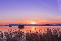 滋賀県 琵琶湖の夕日とヨシ