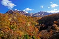 大分県 霧氷の三俣山と飯田高原紅葉