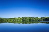 静岡県 一碧湖