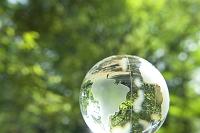 透明な地球儀と緑