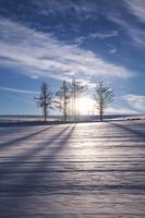 北海道 冬の丘 日没