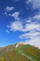 長野県 双児山から甲斐駒ヶ岳と雲