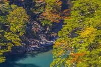 静岡県 秋の寸又峡
