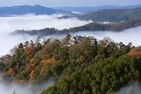岡山県 天空の城 備中松山城