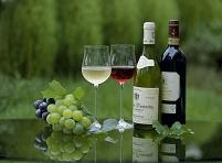 グリーンのワインタイム