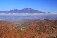 長野県 軽井沢町 八風山より浅間山と紅葉のカラマツ林