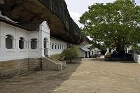 スリランカ 石窟寺院