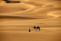 リビア 砂漠を歩く男性とラクダ
