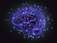 脳神経のネットワークイメージ