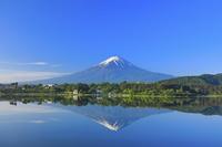 山梨県 残雪の富士山と朝の河口湖に投影する逆さ富士