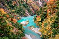 静岡県 紅葉の寸又峡
