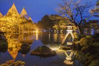 石川県 兼六園ライトアップ 段 ことじ灯籠と雪吊りの唐崎松