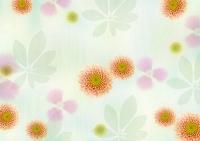 ピンク色の花の和風イメージ