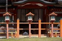 奈良県 春日大社 中門と御廟
