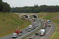 オランダ 高速道路