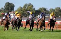 オーストラリア 競馬
