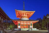 和歌山県 金堂と根本大塔夜景 壇上伽藍