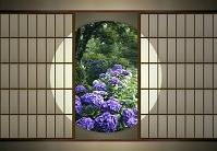 丸窓と紫陽花