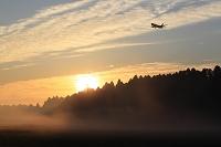 朝霧とボーイング767 JAL