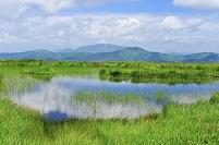 群馬県 尾瀬 アヤメ平から望む池塘と景鶴山