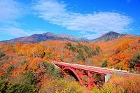 山梨県 清里高原 東沢大橋と紅葉の八ヶ岳