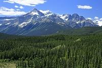 カナダ ハウス川展望台から見るロッキーの山並み