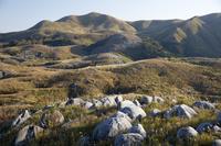 福岡県 日本三大カルストの一つにも数えられる平尾台の風景