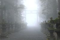 山梨県 朝霧に包まれる北口本宮冨士浅間神社