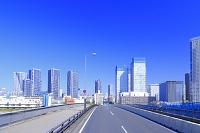 東京都 晴海大橋と高層ビル