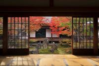 京都府 建仁寺 大書院から見る潮音庭の紅葉と小書院