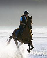 イギリス 乗馬