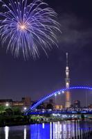 東京都 スカイツリーと花火大会