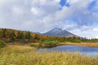青森県 高田大岳と睡蓮沼