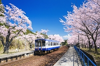 石川県 能登さくら駅