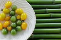 野菜 青竹の上のミニトマト